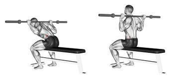 exercising Sube con una sentada de la buena mañana stock de ilustración