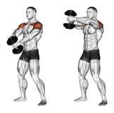 exercising Sube de manos adelante con una pesa de gimnasia Imagenes de archivo