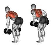Exercising. Thrust dumbbells in the slope stock illustration