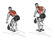 Exercising. Thrust T-shaped on the back muscles in the slope. Thrust T-shaped on the back muscles in the slope. Exercising for bodybuilding Target muscles are Royalty Free Stock Photo