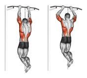 exercising Tirón-UPS en los brachialis stock de ilustración