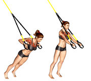 Exercising. TRX Suspender Chest Press. TRX Suspender Chest Press. Exercising for bodybuilding Target muscles are marked in red Royalty Free Stock Photos