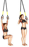 Exercising. TRX Suspender Self assisted Pull-up Stock Image