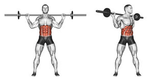 Exercising. Turns torso with barbell Royalty Free Stock Images