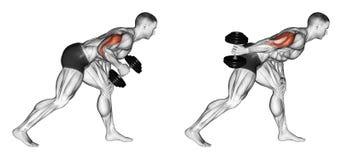 exercising Uitbreiding van één hand terug met een domoor in de helling Stock Foto's