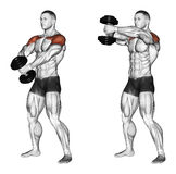 Exercising. Ups of hands forward with one dumbbell