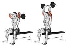 exercitar Braços de extensão com o barbell curvado atrás da cabeça ilustração do vetor