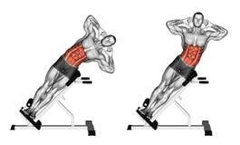 exercitar Curvatura lateral no banco ilustração do vetor