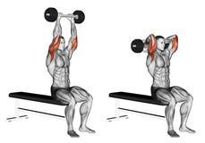 exercitar Extensão olímpica da barra de Tricep ilustração do vetor
