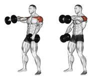 exercitar Peso de levantamento para a frente alternadamente