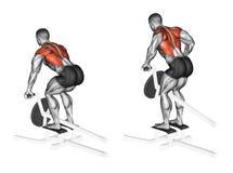 exercitar A pressão T-deu forma nos músculos traseiros na inclinação foto de stock royalty free