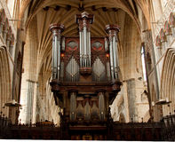 Exeter Cathedral Organ Royalty Free Stock Images