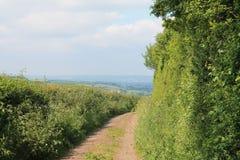 Exeter gränd Royaltyfria Bilder