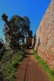 Exeter slott på en solig dag royaltyfri foto