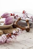 Exfoliating massage med att skämma bort mening royaltyfria foton