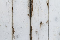 Exfoliating White Lattice Fence Coat. Closeup of a white gloss painted weathered shabby barn door background stock photography