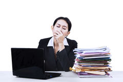 Exhausted businesswoman yawning isolated Royalty Free Stock Photos