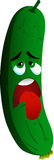 Exhausted cucumber or pickle Royalty Free Stock Images