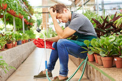 Exhausted man with burnout in nursery shop. Exhausted man with burnout sitting in a nursery shop royalty free stock photo