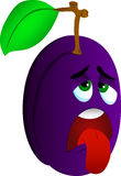 Exhausted plum Royalty Free Stock Image