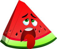 Exhausted slice of watermelon Stock Photo