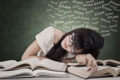 Exhausted student prepare exam Stock Photos