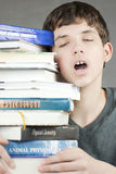 Exhausted Teen Holds Stack Of Textbooks Stock Images