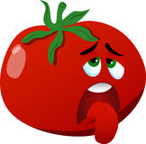 Exhausted tomato Royalty Free Stock Images