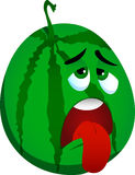 Exhausted watermelon Stock Image