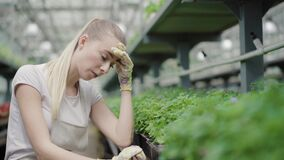 Exhausted young woman taking care of green plants in hothouse. Portrait of tired Caucasian biologist or agronomist