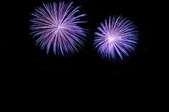 Exhibición azul de los fuegos artificiales Imagen de archivo libre de regalías
