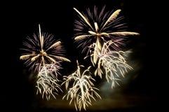 Exhibición blanca y púrpura de los fuegos artificiales Imagen de archivo libre de regalías