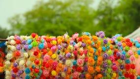 Exhibición color de rosa de la corona del lado del camino Imagen de archivo libre de regalías
