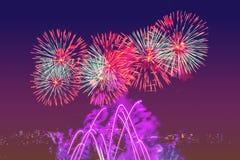 Exhibición coloreada hermosa de los fuegos artificiales en el cielo púrpura Fotografía de archivo libre de regalías