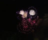 Exhibición colorida de los fuegos artificiales Fotografía de archivo libre de regalías
