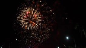 Exhibición colorida hermosa del fuego artificial para la celebración feliz Fuegos artificiales en la ciudad almacen de metraje de vídeo