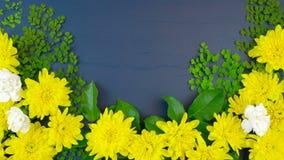 Exhibición de arriba de Pascua de las flores frescas de la primavera en timelapse de madera azul marino