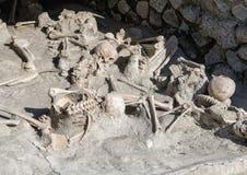 Exhibición de esqueletos humanos, Parco Archeologico di Ercolano Foto de archivo libre de regalías