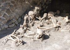 Exhibición de esqueletos humanos, Parco Archeologico di Ercolano Imagen de archivo libre de regalías