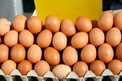 Exhibición de huevos marrones orgánicos Foto de archivo