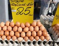Exhibición de huevos marrones orgánicos Imágenes de archivo libres de regalías