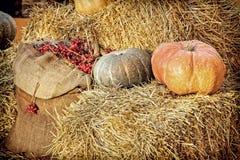 Exhibición de la acción de gracias de la calabaza en la bala de heno y el saco de la arpillera con Imagen de archivo libre de regalías