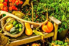 Exhibición de la cosecha de la caída en un pueblo histórico en el Nethrlands Foto de archivo
