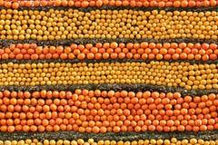 Pared de la fruta Fotos de archivo