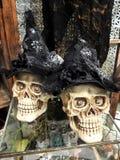 Exhibición de los cráneos de Halloween Fotos de archivo