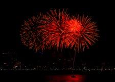 Exhibición de los fuegos artificiales del Año Nuevo Fotos de archivo