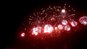 Exhibición del fuego artificial en la noche en fondo negro almacen de video