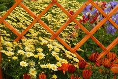Exhibición floral Foto de archivo