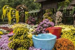 Exhibición floral Fotografía de archivo libre de regalías