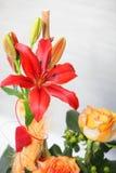 Exhibición floral con el lirio tigrado Fotos de archivo libres de regalías